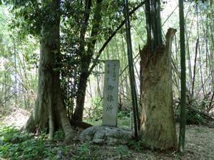シガイの森の石碑
